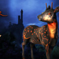 Neverwinter Fawn Giveaway